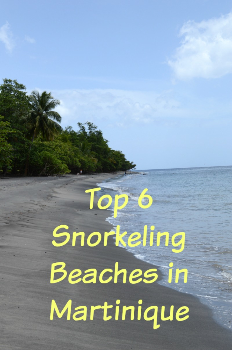 Top 6 Snorkeling Beaches in Martinique