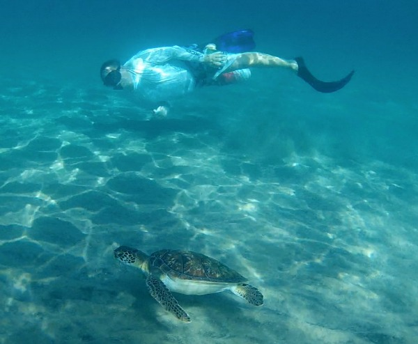Top 6 Snorkeling Beaches in Martinique Anse Dufour