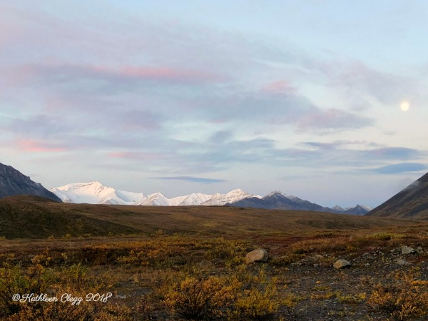 4 Day Dalton Highway Road Trip pebble pirouette.com #alaska #daltonhighway #roadtrip #nature