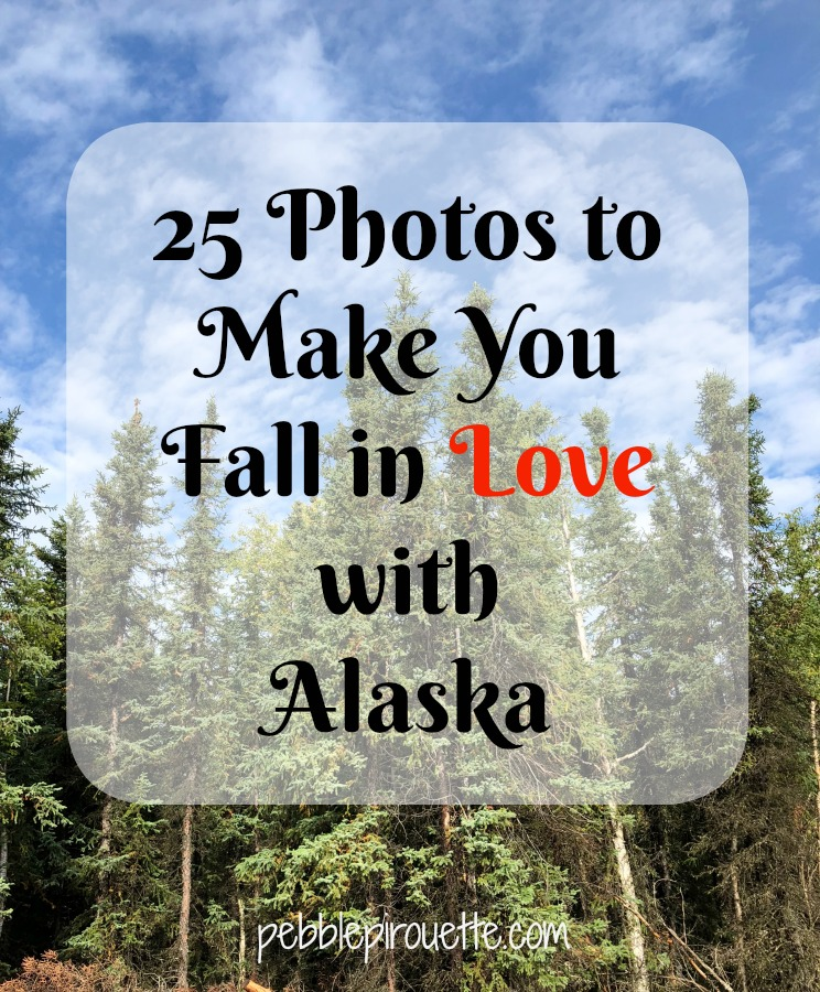 25 Photos to Make You Fall in Love with Alaska pebblepirouette.com #alaska #photos #photography #nature #travel #wildlife