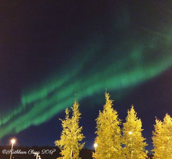 Northern Lights 16 Reasons You Must Visit Alaska #Alaska #travelalaska #visitalaska pebblepirouette.com