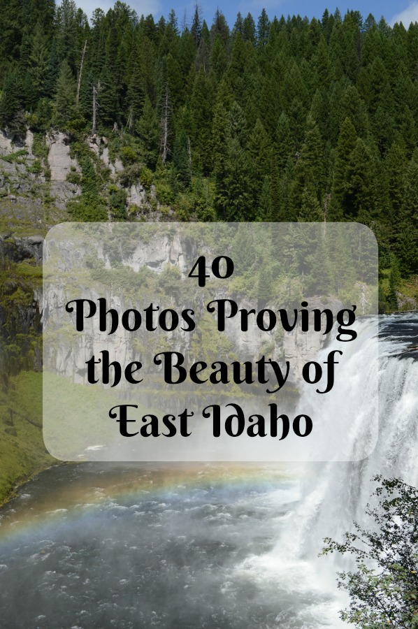 40 Photos Proving the Beauty of East Idaho pebblepirouette.com #idahophotography #idaho #travelphotography #eastidaho #nature #wildlife