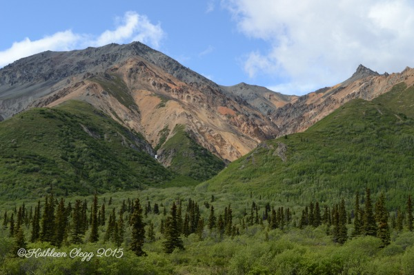 16 Reasons You Must Visit Alaska #Alaska #travelalaska #visitalaska pebblepirouette.com