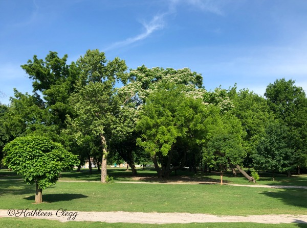 Washington Irving Memorial Park and Arboretum
